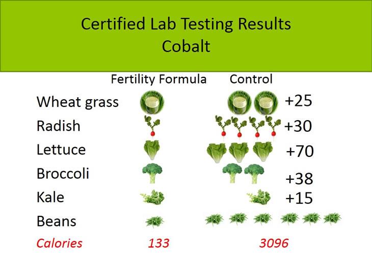 bag-fertility-cobalt